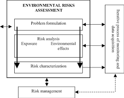 Flow Chart Of Environmental Risk Assessment Download