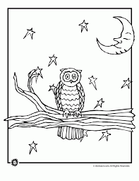 Nocturnal Animals Coloring Pages By Crystle Mulierchile