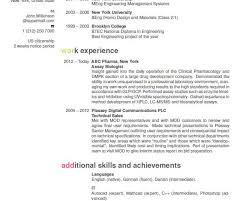 Amazing Resume Service San Diego Ideas Simple Resume Office