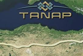 TANAP və TAP birləşdirildi
