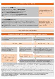 Asthma And Copd Medications Chart Nice Copd Guideline Nice Guideline Guidelines