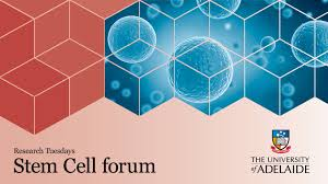 stem cells research milestones and more stem cells research milestones and more