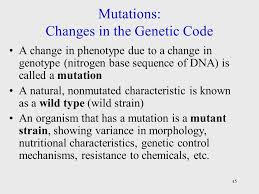mutations changes in the genetic code
