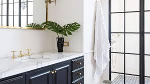 genius bathroom cleaning s you need