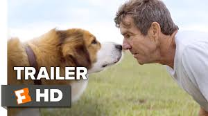 Mature wife and dog movies