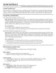 Senior Auditor Resume Examples Internal Sample Bank Samples Audit