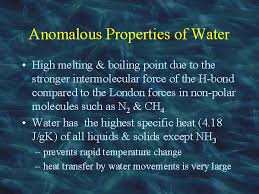 Image result for anomalous property of water