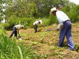 on soil conservation essay on soil conservation