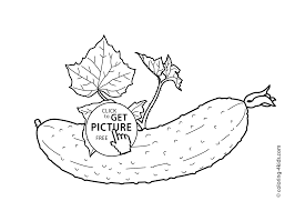 Cucumber With Leaves Vegetables Coloring Pages