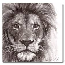 detailed lion drawings in pencil. Unique Drawings Best Pencil Drawing Of A Lion  Google Search With Detailed Drawings In Pencil L