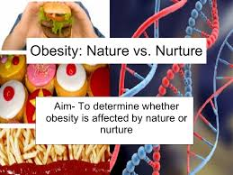 obesity nature vs nuture