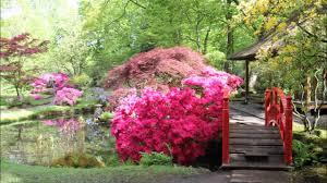 Japanse Tuin Den Haag 2015