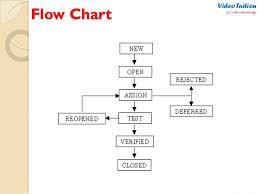 Defect Management Process Flow Chart Systematic Life Cycle Flowchart Bug Life Cycle Flowchart