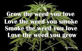 Home Grow Memes - Weed Memes via Relatably.com
