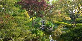 did you know there are creative ways to support ladew topiary gardens ways in which ladew topiary gardens you and your loved ones all benefit at the same