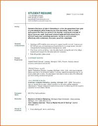 Resume With No Work Experience Template Metabots Co