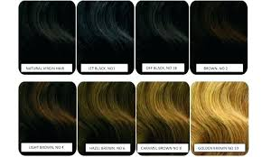Hair Dye Colors Chart Light Brown Hair Color Chart Fooru Me