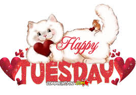 Image result for happy tuesday gifs
