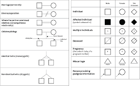 Genetic Pedigree Chart Symbols How To Draw Family Tree Genetics