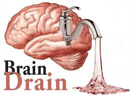 problem of brain drain essays << essay service problem of brain drain essays