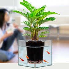 office fish tanks. ergonomic doctoru0027s office fish tanks furniture full size