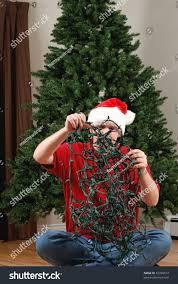 Untangle Christmas Tree Lights Man Attempts Untangle String Christmas Lights Stock Photo