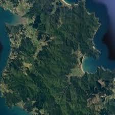 whitianga map new zealand google satellite maps Whitianga Map New Zealand Whitianga Map New Zealand #41 whitianga new zealand map
