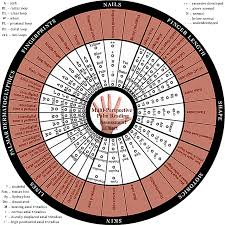 New Assessment Chart For The Hand