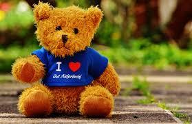 sweet cute bear toy teddy bear children snout s toys funny sanctuary plush stuffed teddy