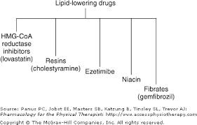 Chapter 26 Antihyperlipidemic Drugs Pharmacology For The