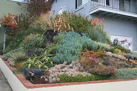 Small Picture Succulent Rock Garden Ideas Photograph Ducote Barnes Front