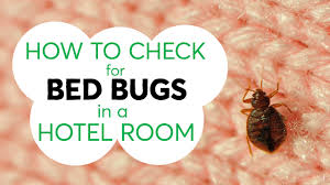 Bedbugs Images How To Check For Bed Bugs In A Hotel Room Consumer Reports Youtube