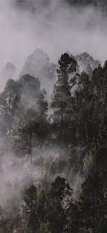 Fog iPhone Wallpapers - Top Free Fog ...