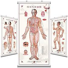 Acupuncture Chart Poster Amazon Com Chinese Medicine Acupoint Map Human Meridian