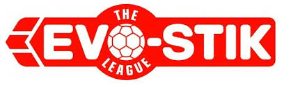 Image result for evostik league