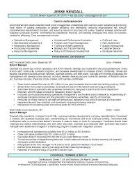 Ideas Collection Sample Resume For Credit Manager On Service