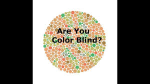 Color Vision Chart Pdf Color Blindness Test Test For Color Blind Ishihara Test Satyendra Mishra