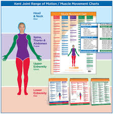 Normal Joint Range Of Motion Chart Head Muscles Range Of