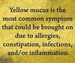 Yellow Mucus in Stool