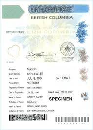 Element Birth Certificate How Much Is A Copy Of My Birth Certificate Luxury Element Baby Book