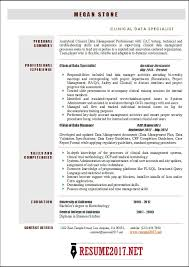 it specialist resumes
