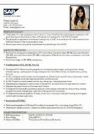 Hr Resume Format Hr Sample Resume Hr Cv Samples Naukri Com Cv Curriculum  Vitae Samples Pdf