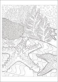 nav nature vistas coloring book creative haven main photo cover nav nav nav