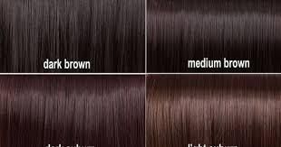 Shades Of Brown Hair Pinterest New Dark Auburn Hair Color