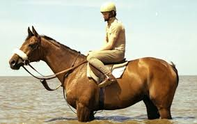 Image result for desert orchid paintings