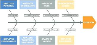 Succession Planning An Answer To The Challenge Flight Risk Diagram ...