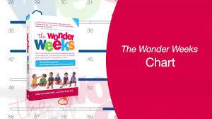 The Wonder Weeks Chart Explained