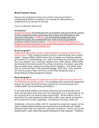 model academic essay discuss why assignment essays are