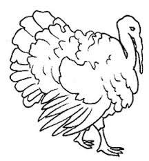 Resultado de imagen de figura del pavo de granja