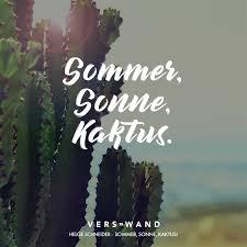 Sommer Sonne Kaktus Helge Schneider Verswand Visual